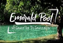 emerald pool cover